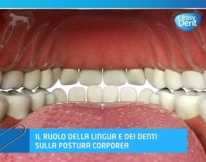 illustrazione della bocca dall'interno, con lingua e denti